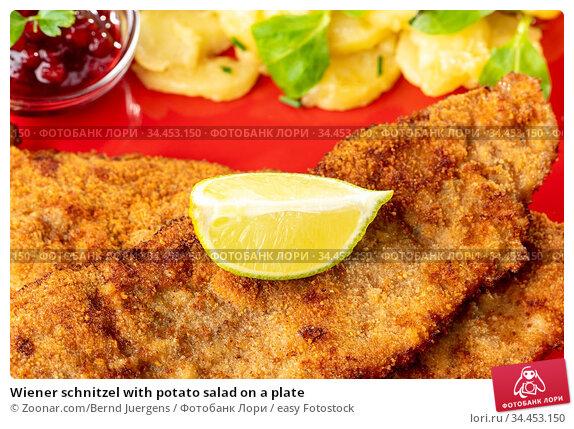 Wiener schnitzel with potato salad on a plate. Стоковое фото, фотограф Zoonar.com/Bernd Juergens / easy Fotostock / Фотобанк Лори