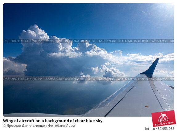 Wing of aircraft on a background of clear blue sky. Стоковое фото, фотограф Ярослав Данильченко / Фотобанк Лори
