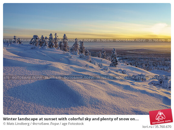 Winter landscape at sunset with colorful sky and plenty of snow on... Стоковое фото, фотограф Mats Lindberg / age Fotostock / Фотобанк Лори