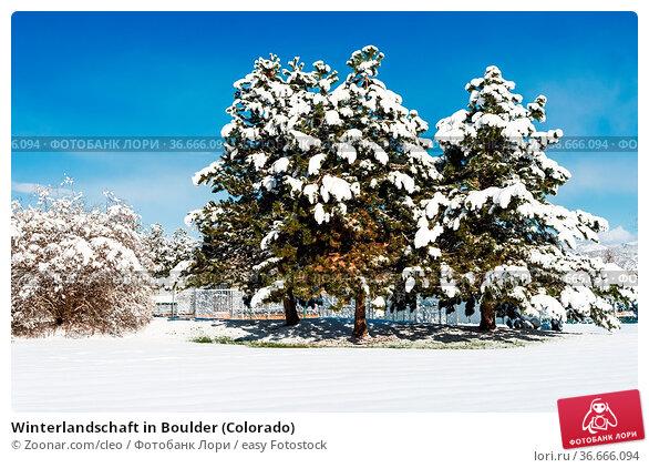 Winterlandschaft in Boulder (Colorado) Стоковое фото, фотограф Zoonar.com/cleo / easy Fotostock / Фотобанк Лори