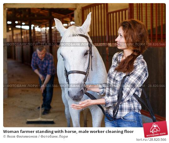 Купить «Woman farmer standing with horse, male worker cleaning floor», фото № 28820566, снято 4 июля 2018 г. (c) Яков Филимонов / Фотобанк Лори