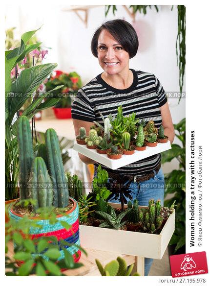 Купить «Woman holding a tray with cactuses», фото № 27195978, снято 19 января 2019 г. (c) Яков Филимонов / Фотобанк Лори