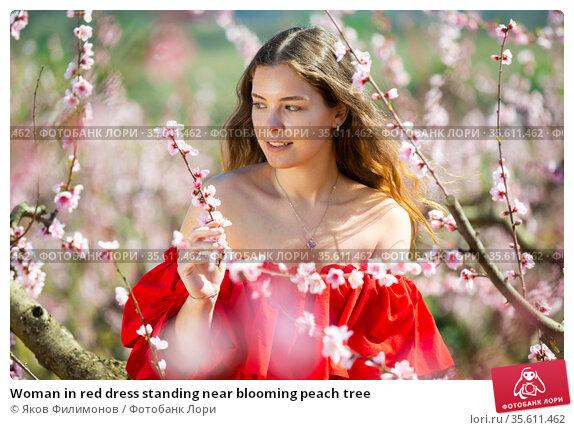 Woman in red dress standing near blooming peach tree. Стоковое фото, фотограф Яков Филимонов / Фотобанк Лори
