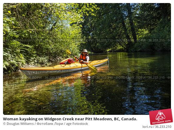 Woman kayaking on Widgeon Creek near Pitt Meadows, BC, Canada. Редакционное фото, фотограф Douglas Williams / age Fotostock / Фотобанк Лори