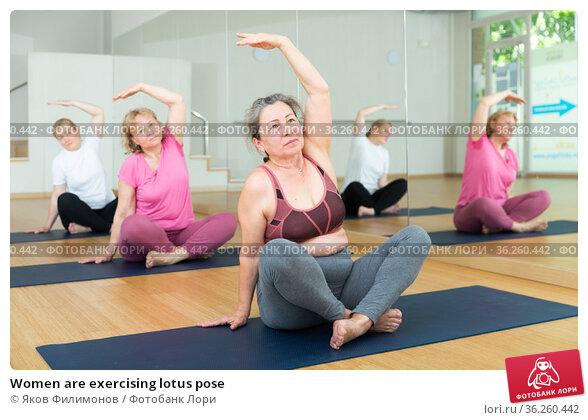 Women are exercising lotus pose. Стоковое фото, фотограф Яков Филимонов / Фотобанк Лори