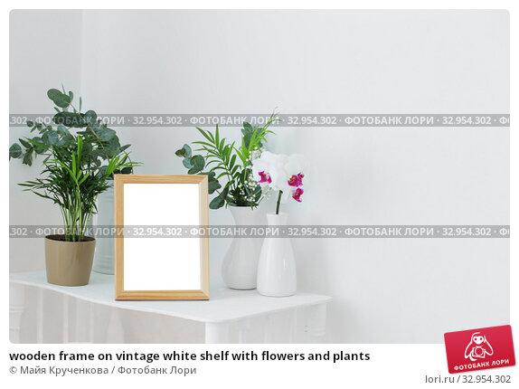 Купить «wooden frame on vintage white shelf with flowers and plants», фото № 32954302, снято 14 января 2020 г. (c) Майя Крученкова / Фотобанк Лори