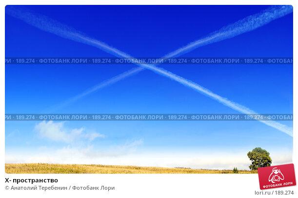 X- пространство, фото № 189274, снято 2 сентября 2007 г. (c) Анатолий Теребенин / Фотобанк Лори