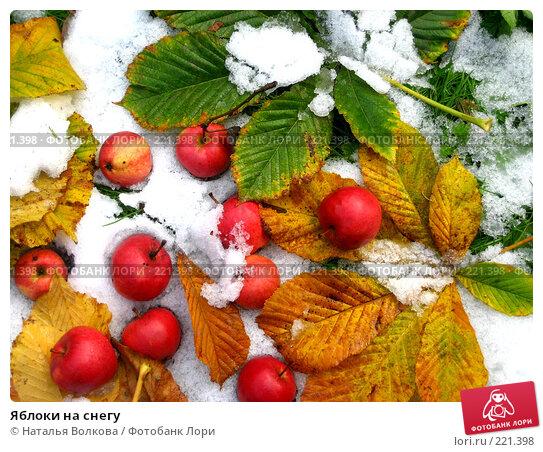 Купить «Яблоки на снегу», эксклюзивное фото № 221398, снято 17 октября 2007 г. (c) Наталья Волкова / Фотобанк Лори