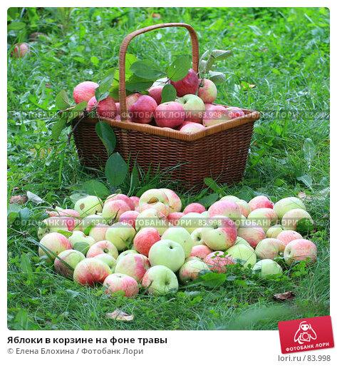 Яблоки в корзине на фоне травы, фото № 83998, снято 13 сентября 2007 г. (c) Елена Блохина / Фотобанк Лори