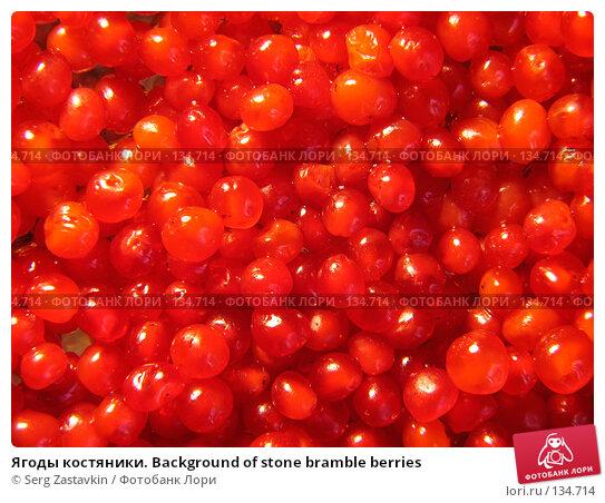 Ягоды костяники. Background of stone bramble berries, фото № 134714, снято 30 июля 2005 г. (c) Serg Zastavkin / Фотобанк Лори