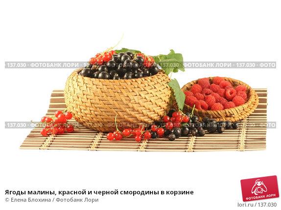 Ягоды малины, красной и черной смородины в корзине, фото № 137030, снято 1 июля 2007 г. (c) Елена Блохина / Фотобанк Лори