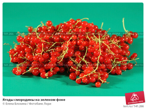 Ягоды смородины на зеленом фоне, фото № 141266, снято 1 июля 2007 г. (c) Елена Блохина / Фотобанк Лори