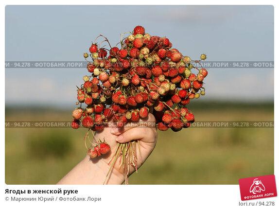 Ягоды в женской руке, фото № 94278, снято 1 июля 2007 г. (c) Марюнин Юрий / Фотобанк Лори