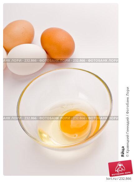 Яйца, фото № 232866, снято 18 июля 2005 г. (c) Кравецкий Геннадий / Фотобанк Лори