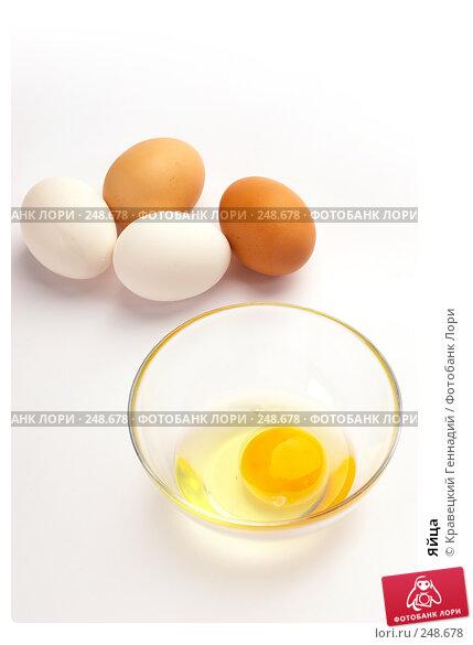 Яйца, фото № 248678, снято 18 июля 2005 г. (c) Кравецкий Геннадий / Фотобанк Лори