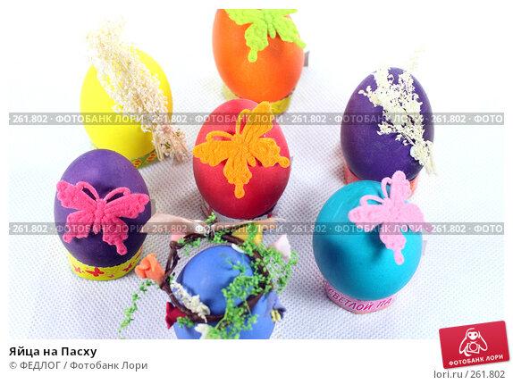 Яйца на Пасху, фото № 261802, снято 24 апреля 2008 г. (c) ФЕДЛОГ.РФ / Фотобанк Лори
