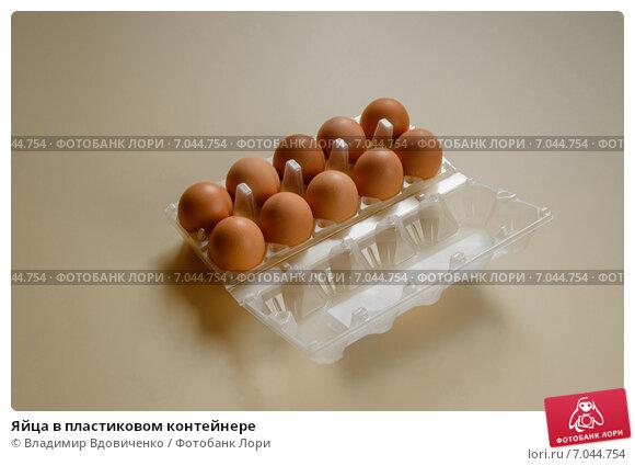 Яйца в пластиковом контейнере. Стоковое фото, фотограф Владимир Вдовиченко / Фотобанк Лори