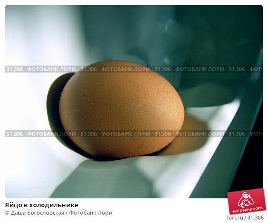 Яйцо в холодильнике, фото № 31306, снято 6 июня 2005 г. (c) Даша Богословская / Фотобанк Лори