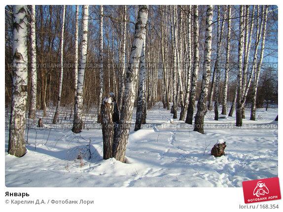 Купить «Январь», фото № 168354, снято 5 января 2008 г. (c) Карелин Д.А. / Фотобанк Лори