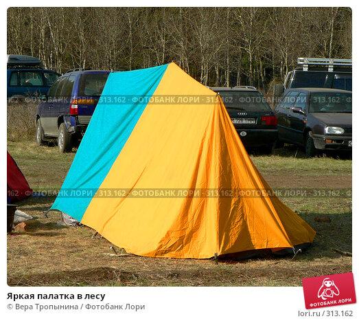 Купить «Яркая палатка в лесу», фото № 313162, снято 23 марта 2018 г. (c) Вера Тропынина / Фотобанк Лори