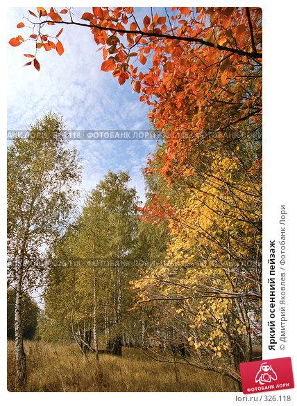 Яркий осенний пейзаж, фото № 326118, снято 27 февраля 2017 г. (c) Дмитрий Яковлев / Фотобанк Лори