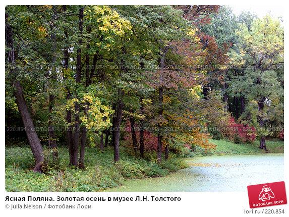 Купить «Ясная Поляна. Золотая осень в музее Л.Н. Толстого», фото № 220854, снято 22 сентября 2007 г. (c) Julia Nelson / Фотобанк Лори