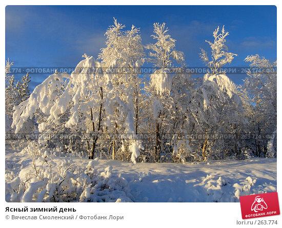 Ясный зимний день, фото № 263774, снято 10 ноября 2006 г. (c) Вячеслав Смоленский / Фотобанк Лори