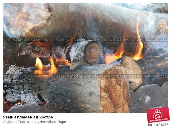 Языки пламени в костре, эксклюзивное фото № 4258, снято 8 мая 2006 г. (c) Ирина Терентьева / Фотобанк Лори
