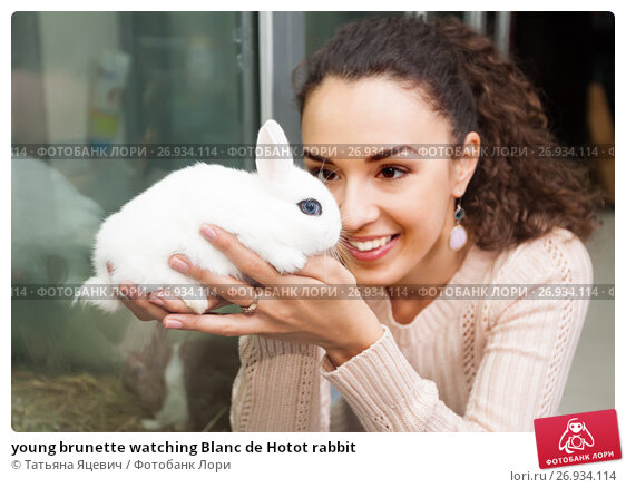 young brunette watching Blanc de Hotot rabbit, фото № 26934114, снято 26 января 2016 г. (c) Татьяна Яцевич / Фотобанк Лори