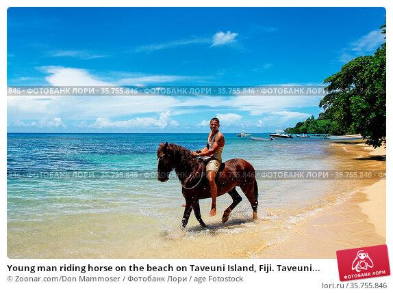 Young man riding horse on the beach on Taveuni Island, Fiji. Taveuni... Стоковое фото, фотограф Zoonar.com/Don Mammoser / age Fotostock / Фотобанк Лори