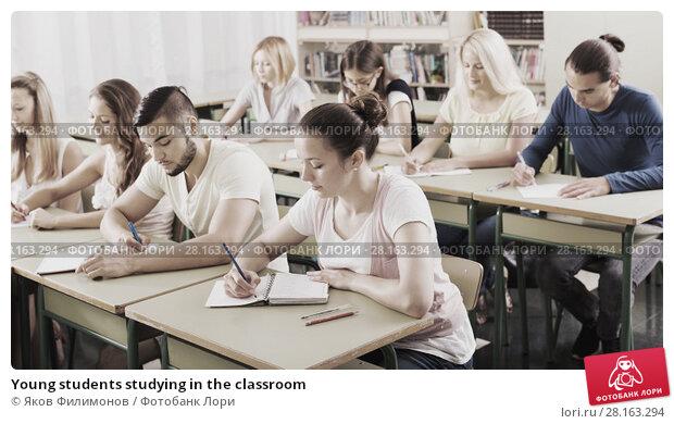 Купить «Young students studying in the classroom», фото № 28163294, снято 17 ноября 2018 г. (c) Яков Филимонов / Фотобанк Лори
