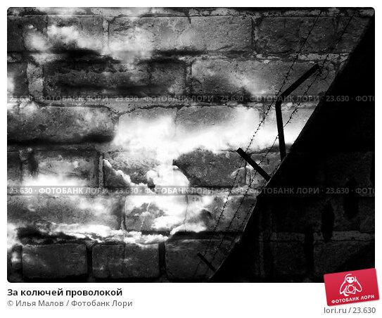 Купить «За колючей проволокой», фото № 23630, снято 11 сентября 2006 г. (c) Илья Малов / Фотобанк Лори