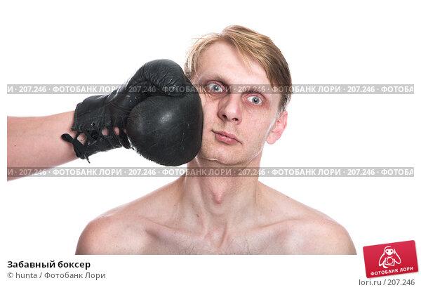 Забавный боксер, фото № 207246, снято 13 декабря 2007 г. (c) hunta / Фотобанк Лори