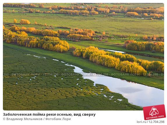 Заболоченная пойма реки осенью, вид сверху, фото № 12704298, снято 6 сентября 2015 г. (c) Владимир Мельников / Фотобанк Лори
