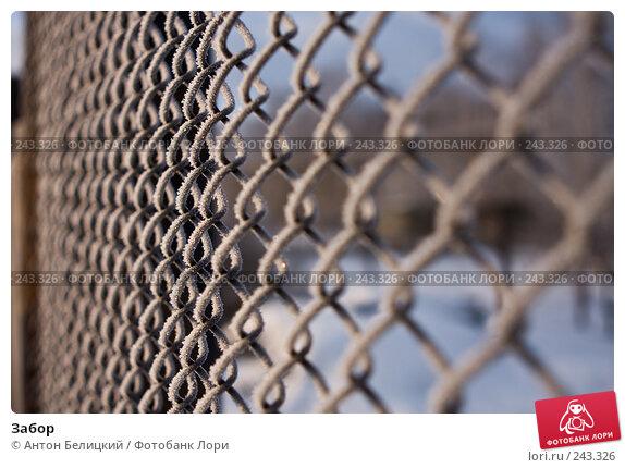 Забор, фото № 243326, снято 11 февраля 2008 г. (c) Антон Белицкий / Фотобанк Лори