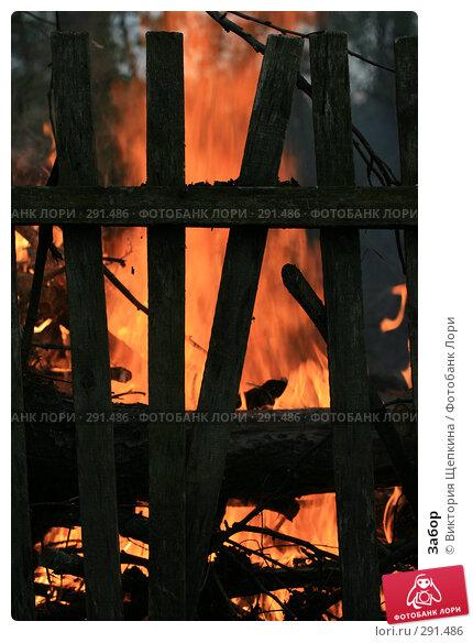 Купить «Забор», фото № 291486, снято 2 мая 2008 г. (c) Виктория Щепкина / Фотобанк Лори