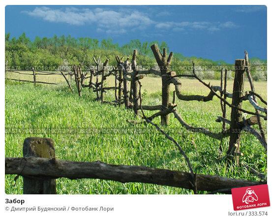 Забор, фото № 333574, снято 20 мая 2008 г. (c) Дмитрий Будянский / Фотобанк Лори