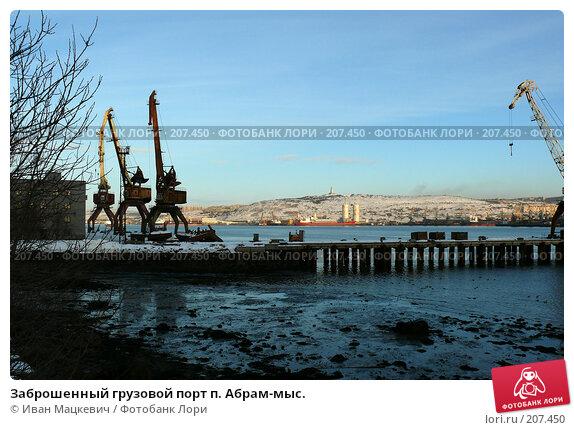 Купить «Заброшенный грузовой порт п. Абрам-мыс.», эксклюзивное фото № 207450, снято 9 февраля 2008 г. (c) Иван Мацкевич / Фотобанк Лори
