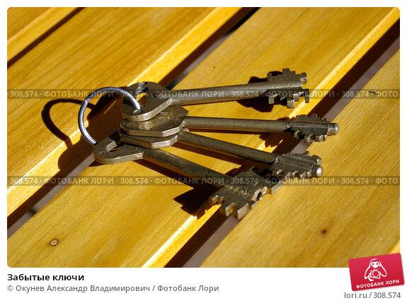 Забытые ключи, фото № 308574, снято 2 июня 2008 г. (c) Окунев Александр Владимирович / Фотобанк Лори