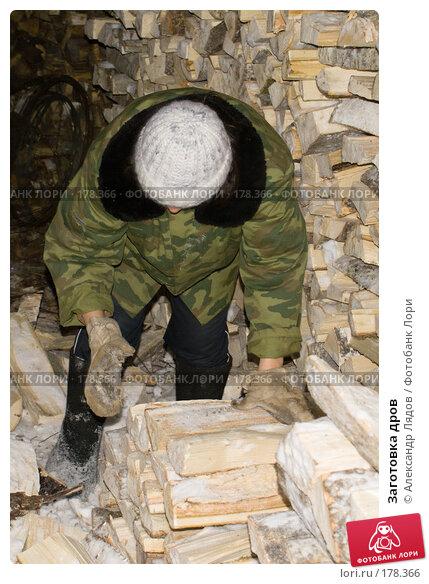 Заготовка дров, фото № 178366, снято 6 января 2008 г. (c) Александр Лядов / Фотобанк Лори
