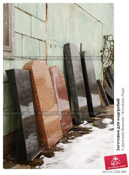 Купить «Заготовки для надгробий», фото № 252586, снято 10 марта 2008 г. (c) Дмитрий Яковлев / Фотобанк Лори