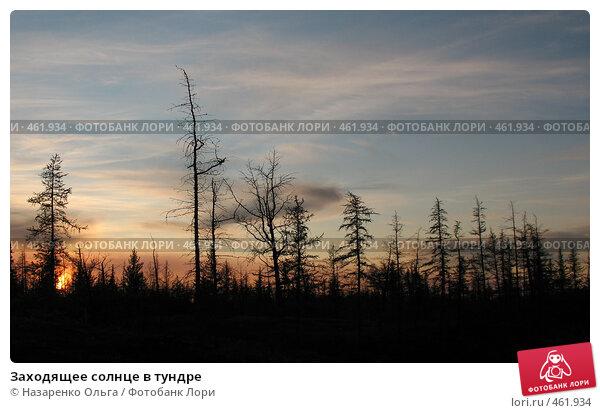 Купить «Заходящее солнце в тундре», фото № 461934, снято 7 сентября 2008 г. (c) Назаренко Ольга / Фотобанк Лори