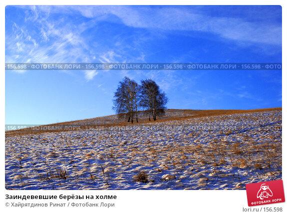 Заиндевевшие берёзы на холме, фото № 156598, снято 12 декабря 2007 г. (c) Хайрятдинов Ринат / Фотобанк Лори