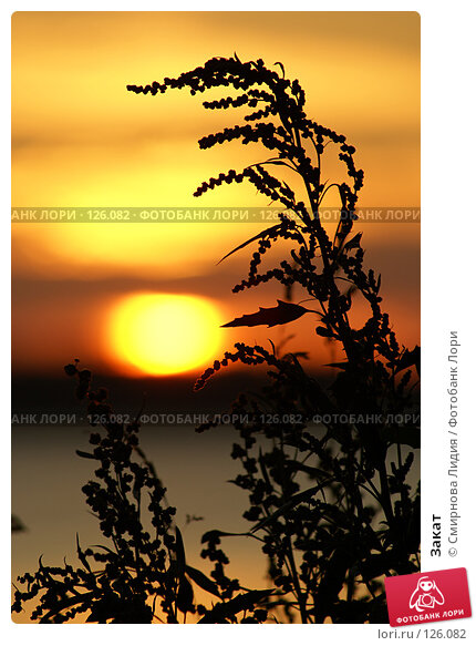 Закат, фото № 126082, снято 7 июля 2007 г. (c) Смирнова Лидия / Фотобанк Лори
