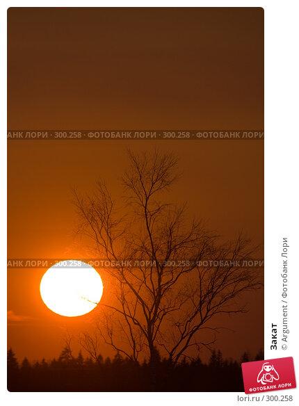 Закат, фото № 300258, снято 29 марта 2008 г. (c) Argument / Фотобанк Лори