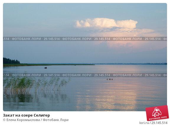 Купить «Закат на озере Селигер», фото № 29145514, снято 28 июля 2018 г. (c) Елена Коромыслова / Фотобанк Лори
