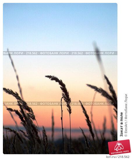 Закат в поле, фото № 218562, снято 26 июня 2017 г. (c) ElenArt / Фотобанк Лори