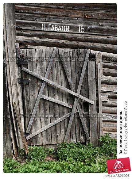 Заколоченная дверь, фото № 284026, снято 1 мая 2008 г. (c) Петр Бюнау / Фотобанк Лори