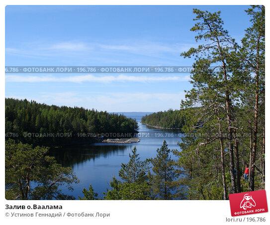 Залив о.Ваалама, фото № 196786, снято 16 июня 2006 г. (c) Устинов Геннадий / Фотобанк Лори