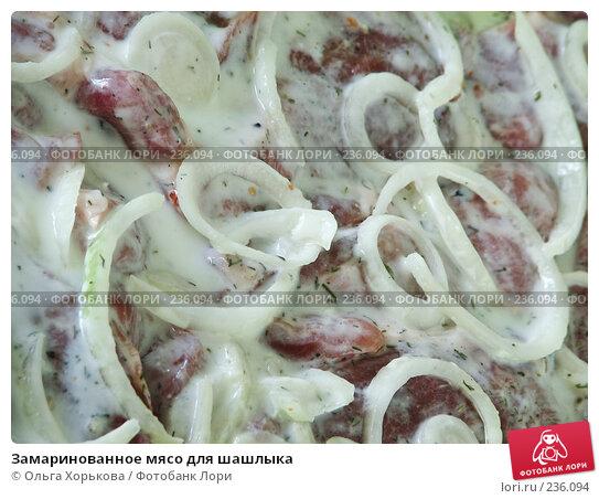 Замаринованное мясо для шашлыка, фото № 236094, снято 25 июня 2017 г. (c) Ольга Хорькова / Фотобанк Лори